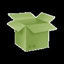 carton-vert