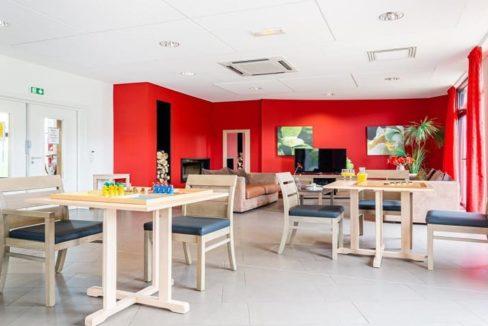 espace-commun-residence-senior-volgelsheim-girandieres