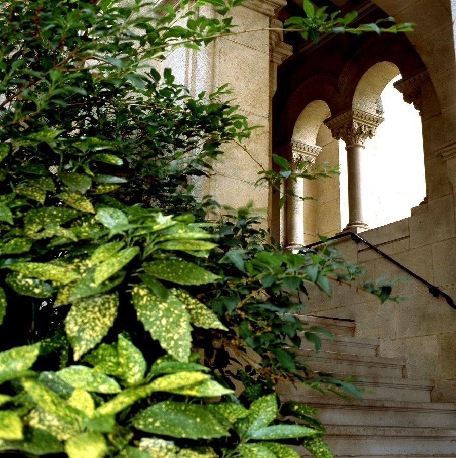 residence-seniors-bordeaux-templitudes-3