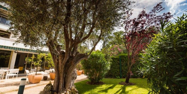 residence-seniors-cannes-les-jardins-arcadie-4