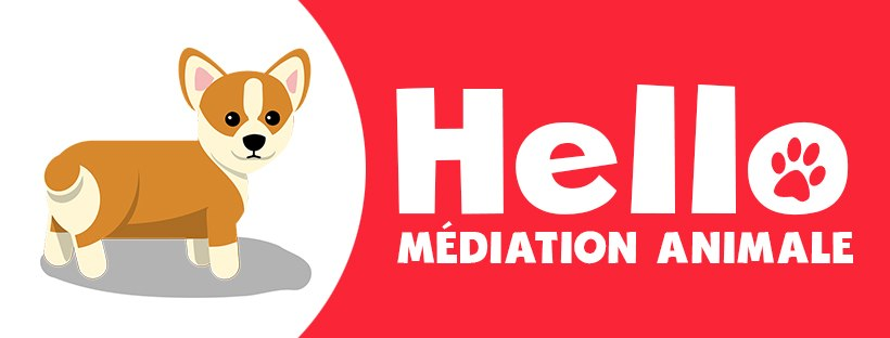 Couverture Facebook Hello médiation animale