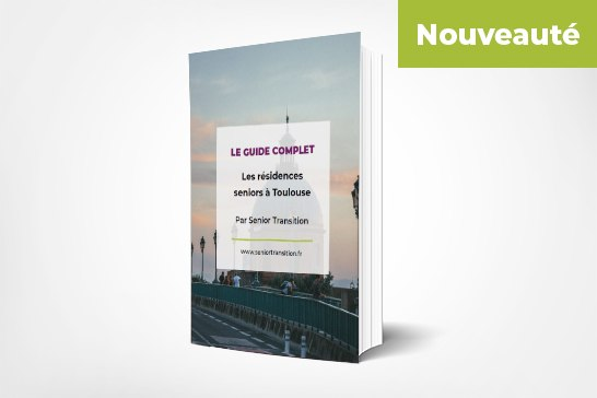guide-complet toulouse -home-page