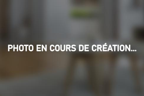 photo_en_cours_de_création_5