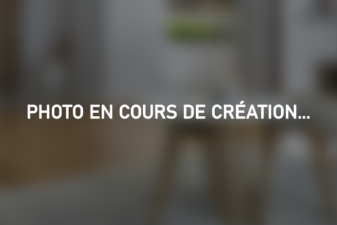 photo_en_cours_de_création_BANNIERE